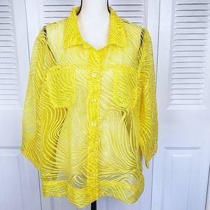 Erin London sheer button down blouse size 1X
